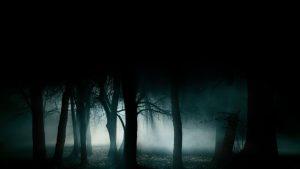 miedo_a_la_oscuridad_adultos